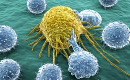 Other/Multi-Tumor